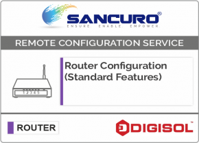DIGISOL Router Configuration (Standard Features)