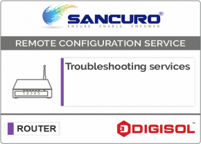 Troubleshooting services For Digisol Router