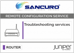 Troubleshooting services For JUNIPER Router